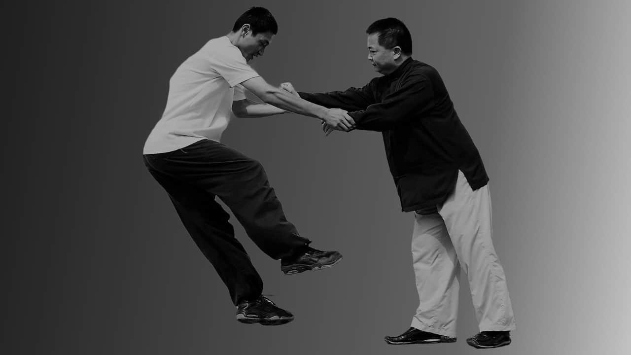 Prana Dynamics Master Program